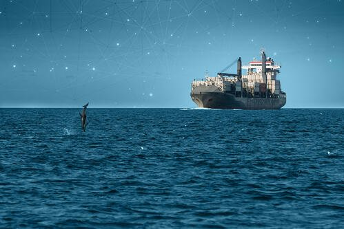 Why Dualog is the right choice for your shipping company