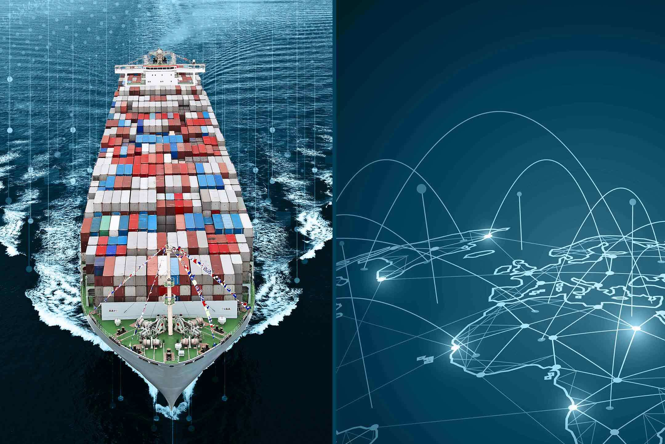 Maritime-specific vs. generic IT systems – pros and cons